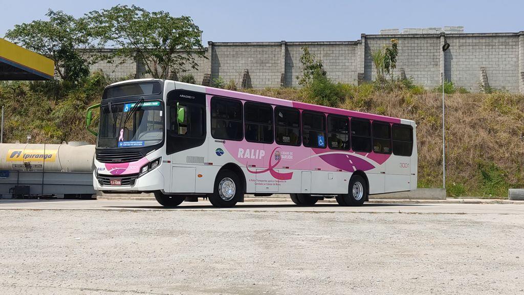 Ônibus rosa: linha municipal amplia número de veículos